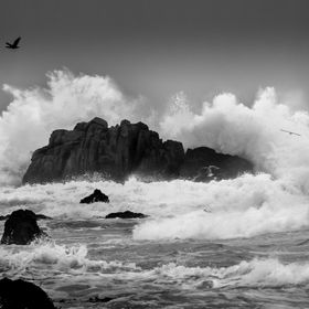 Lots of opportunities for crashing wave shots along the coast in Pacific Grove, California, but always tough to get just the right one...