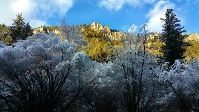 Winter's Blast