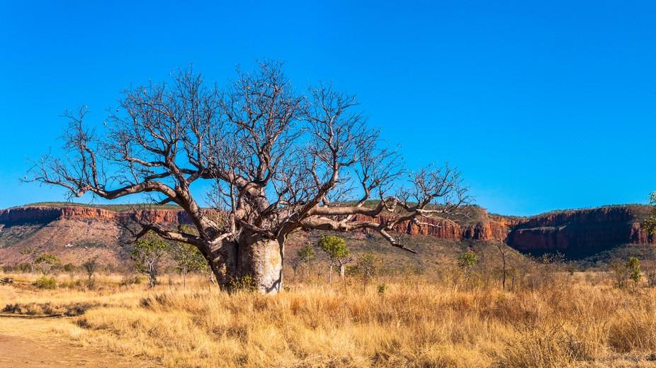 Taken In The Kimberlyes Western Australia