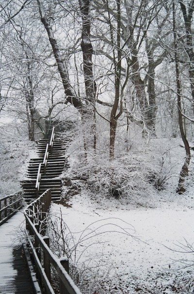 Winter in Allaire