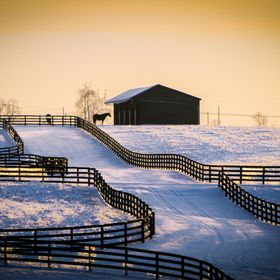 2009. A thin blanket of snow barely hides the ground on a horse farm at sunset, near the central Kentucky city of Lexington.