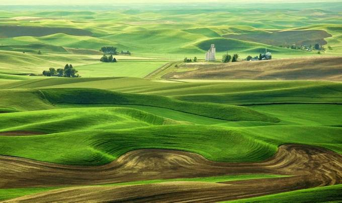 Palouse Spring by Jekawrig - Unforgettable Landscapes Photo Contest by Zenfolio