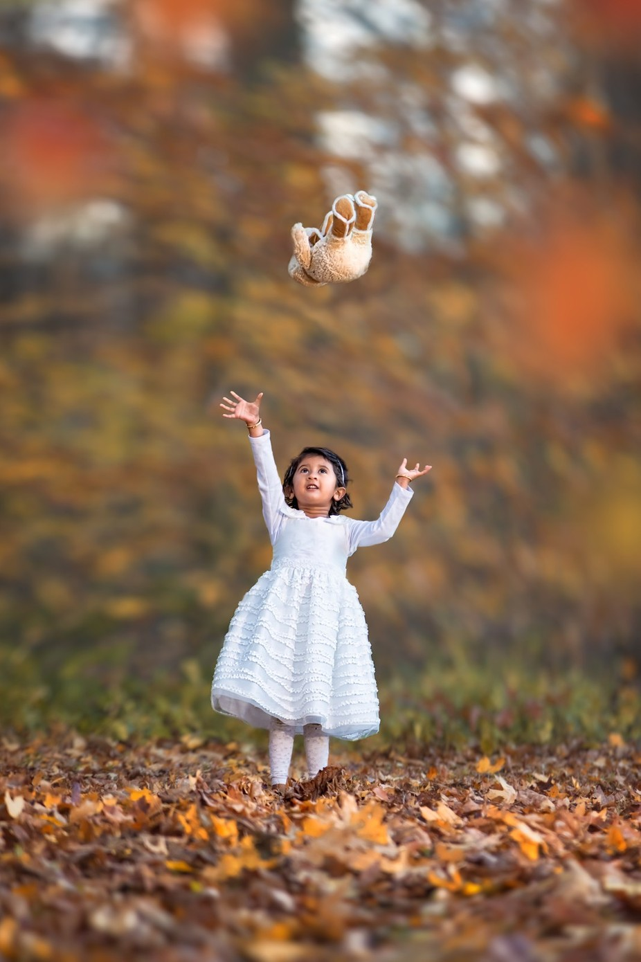 Tossing Teddy by sushmitasadhukhan - Happy Moments Photo Contest