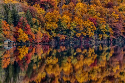 Reflections on a Fall Day