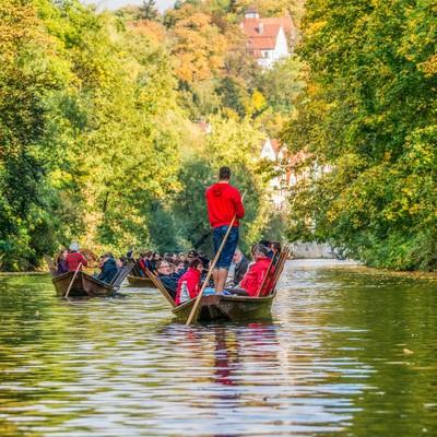 Punting on the Neckar