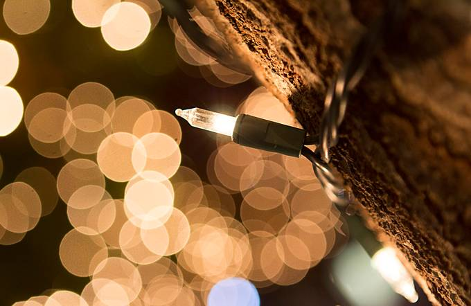 Christimas Time - University of the incarnate word by AlvaroPadron - Night And Bokeh Photo Contest