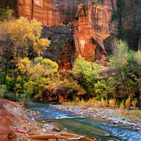 This photograph was taken during a trip to Zion National Park.