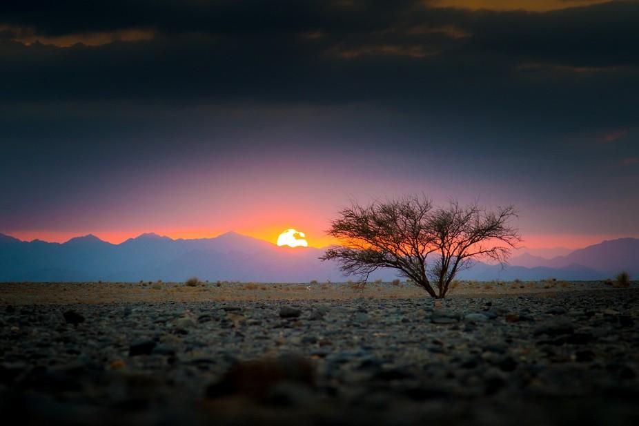Sunset in the desert, Sultanate of Oman.