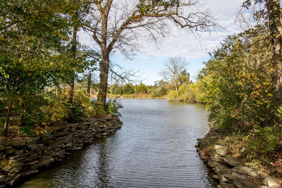 Herrick Lake Forest Preserve.  This is the channel connecting the two lakes.  Herrick Lake is one...