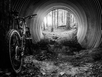 Trail Tunnel