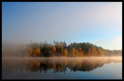 Fall colors wrapped in morning mist