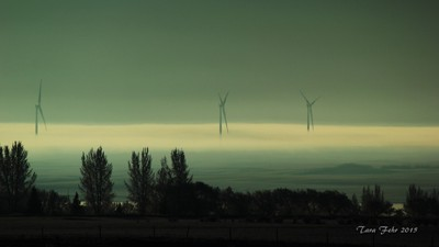 MG 2015 Windmills at Sunrise with Fog