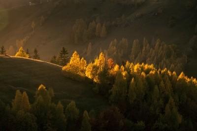 Transylvanian Fall