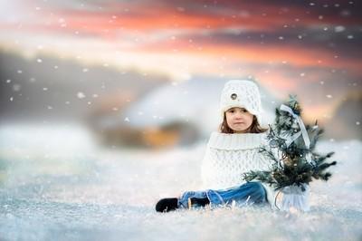 The Winter Princess
