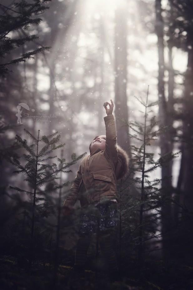 Adeline by ShannonAlexander - Divine Forests Photo Contest