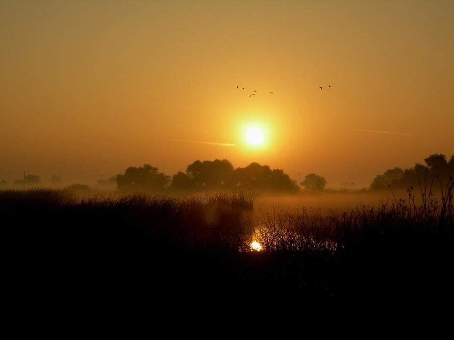 Wildlife Reserve Sunrise