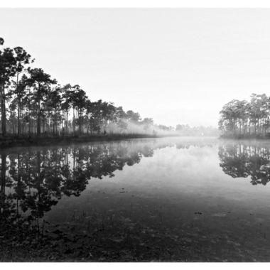 My Reflections feel foggy