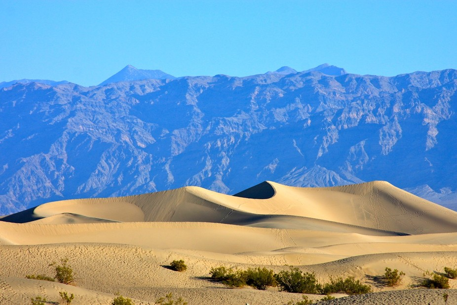 Beautiful Death Valley sand dunes.