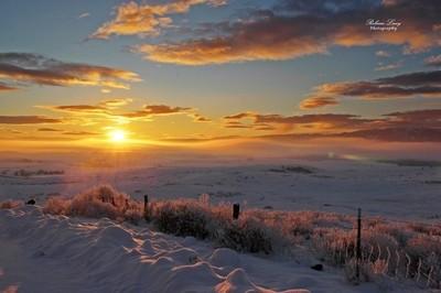 Christmas Sunset