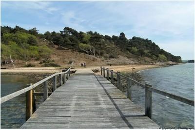 An abandoned bridge in Brown sea island