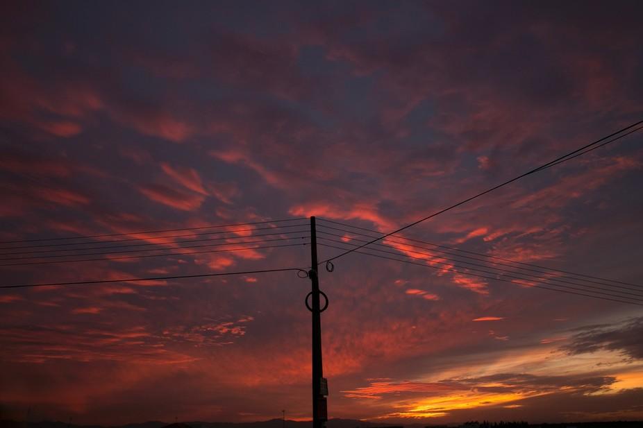Makoto Shinkai Sky