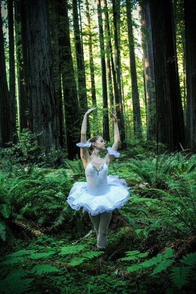 Ballerina in the forest