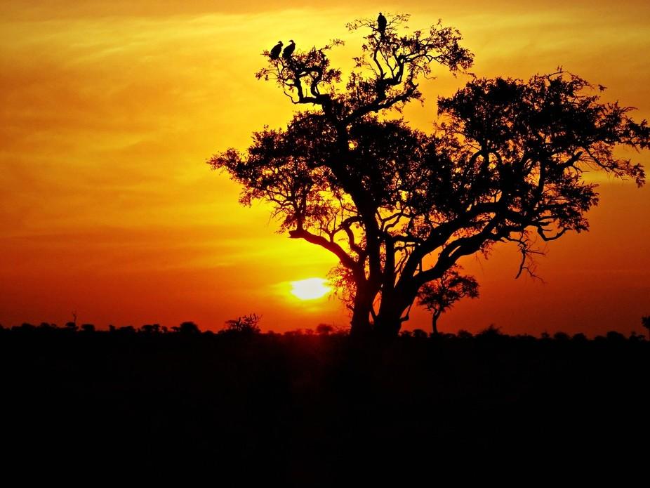 Kruger National Park sunset June 2012