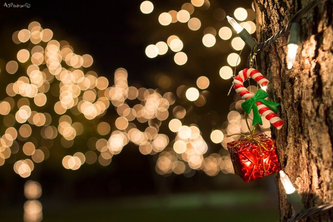Christmas Bokeh by AlvaroPadron - Night And Bokeh Photo Contest