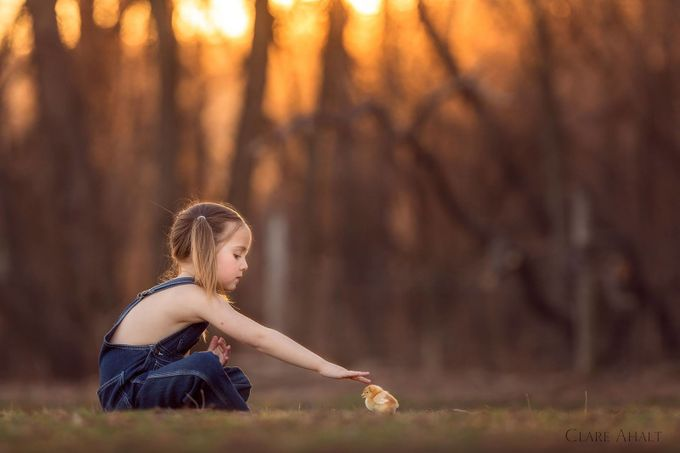 A girl and her chick by clareahalt - Children and Animals Photo Contest