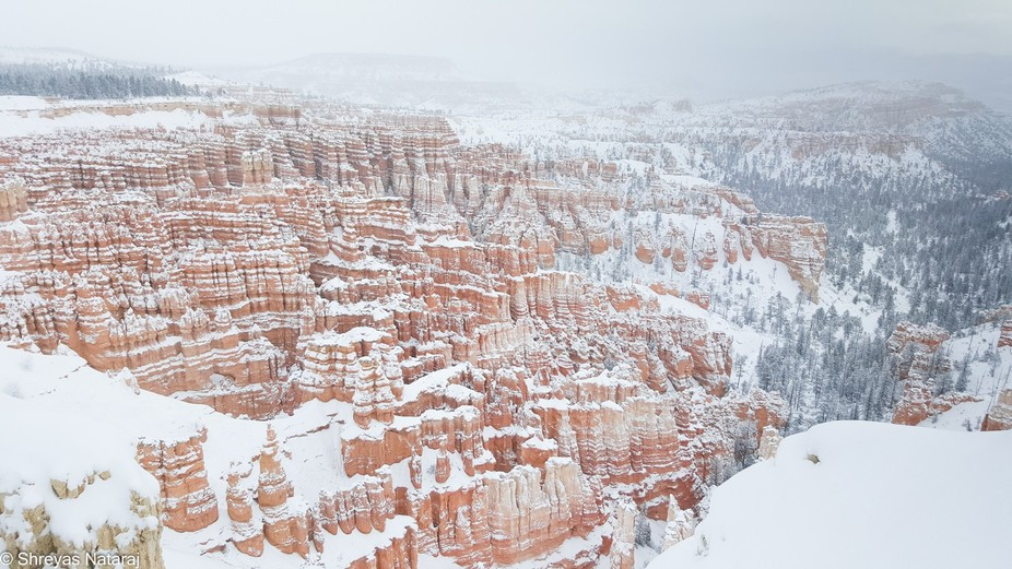 Canyons in the Winter