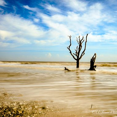 Botney Bay, Edisto Beach, South Carolina