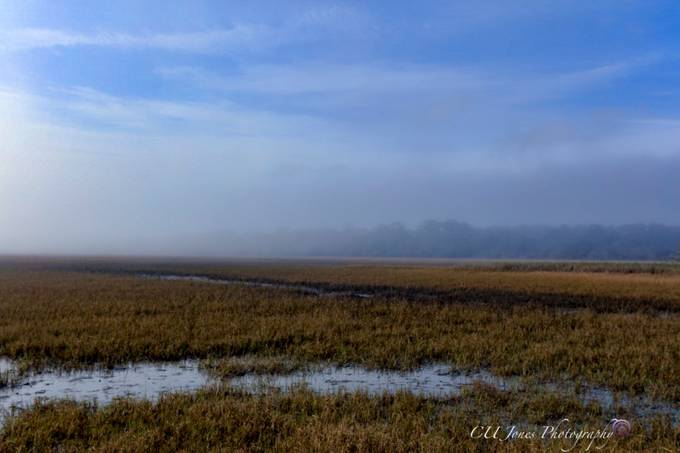 Botney Bay, The fog came rolling in. It was awesome