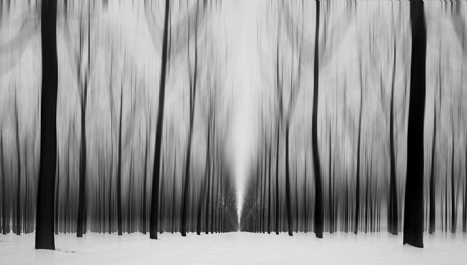 The forest, as it is called in the lower Po plain, simple, geometric but charming.