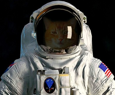 Buddy The Astronaut
