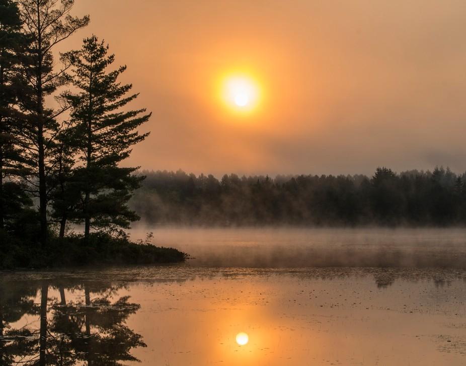 Algonquin Park Morning Mist