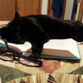 There is nothing my cat likes better than napping on paper that I'm trying to use.  Books, notes, whatever.
