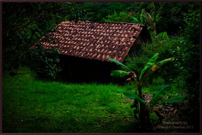 Don Juan Coffee Tour - Original Building in Jungle - Monteverde, Costa Rica 9-28-2015.