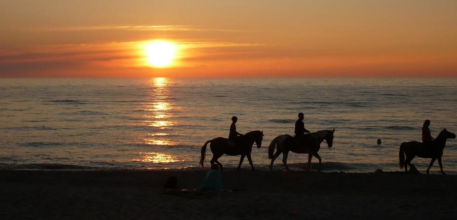 Sunset w/ horse