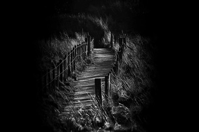 the path to April dreams