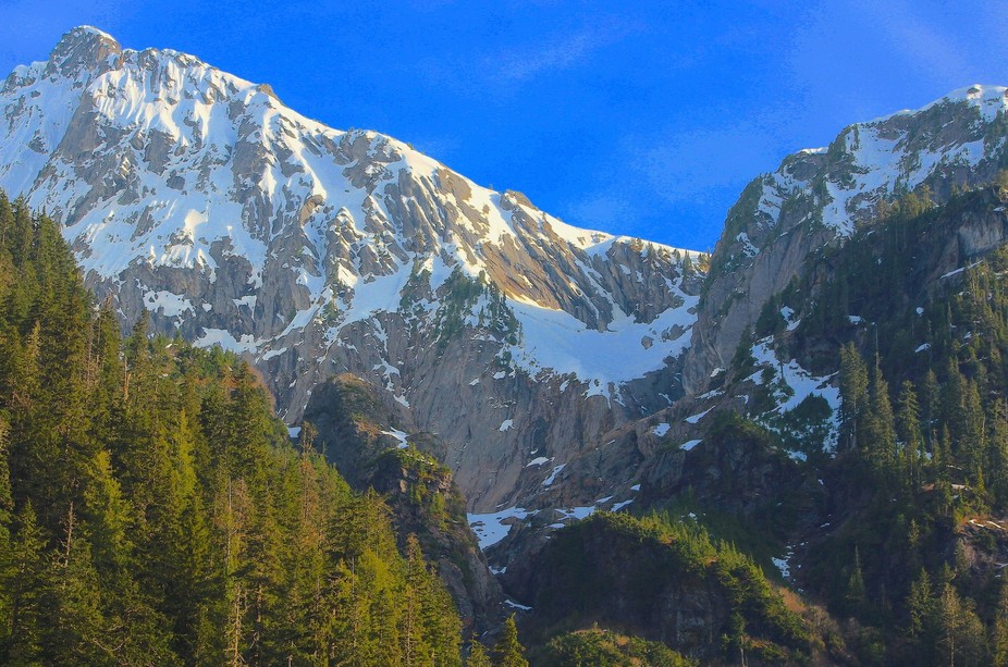 Hiking on a trail at Mount Baker and saw these beautiful mountains and started taking photographs.