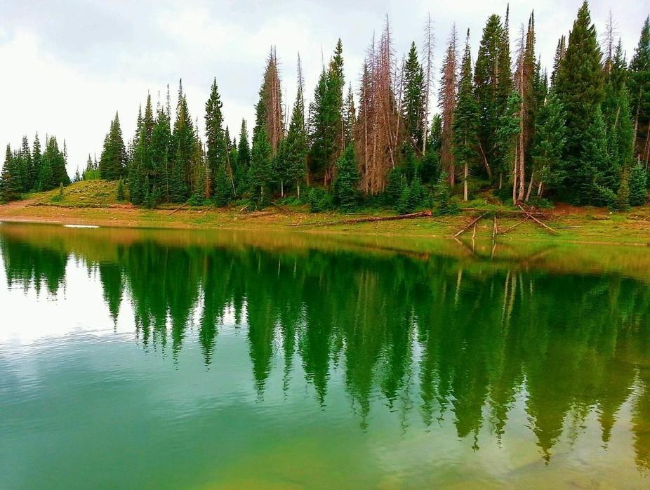 Manti - La Sal National Forest