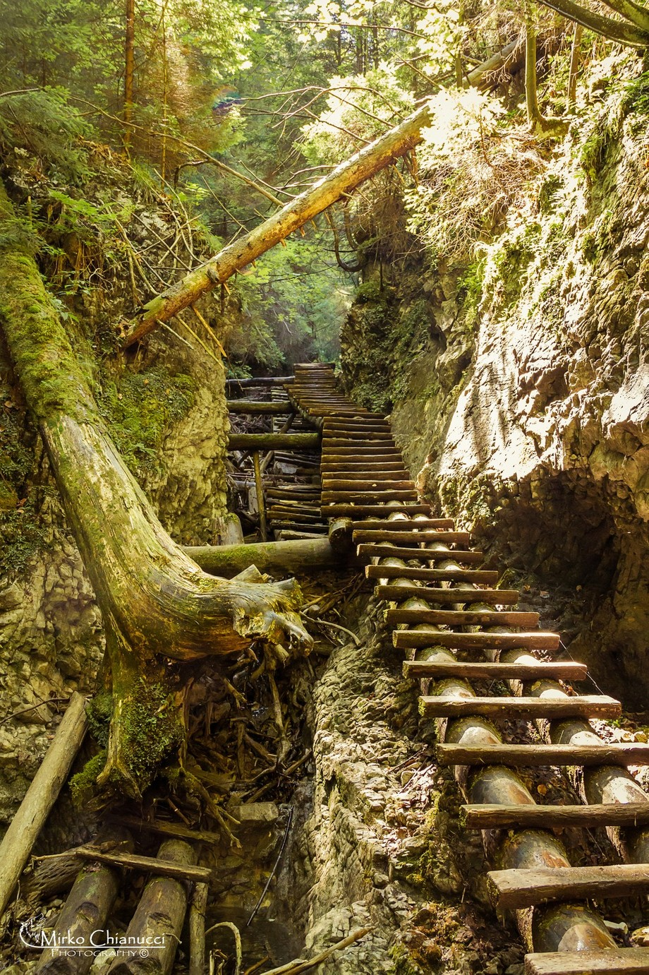 Stairway to the unknown by mirkokianu - Stairways Photo Contest