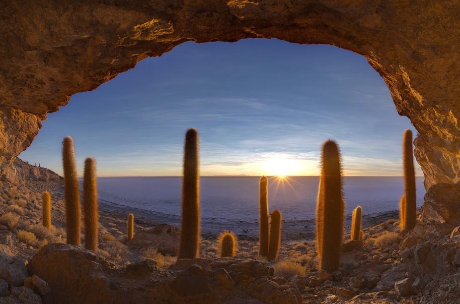 Bolivia, saline Uyuny. Sunrise from Cactus Island.