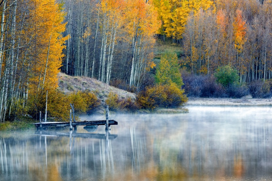 Fall colors with morning mist
