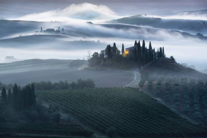 Unfolding Beauty by maxfoster - Mist And Drizzle Photo Contest