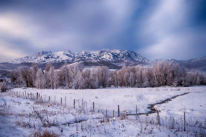 Winter Moods by mseawell