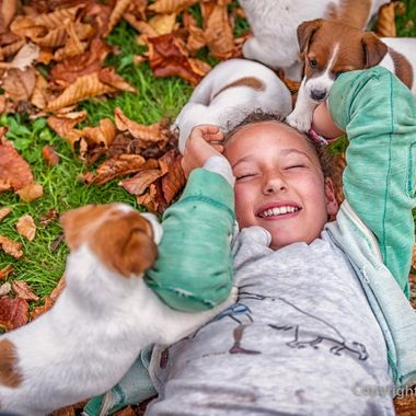 During a family portrait session I was shown around the gardens by one of the daughters and all of the puppies!
