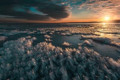 Ice crystals at dawn