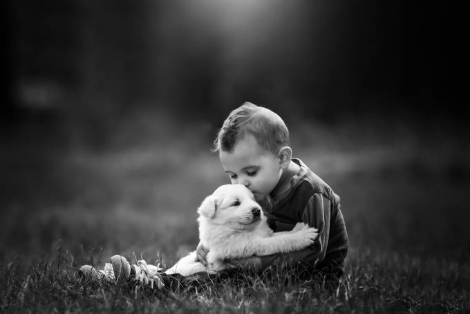A boy and his pup by StephanieStafford_Photog - Children and Animals Photo Contest