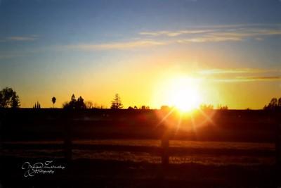 Love MY Cali Sun...